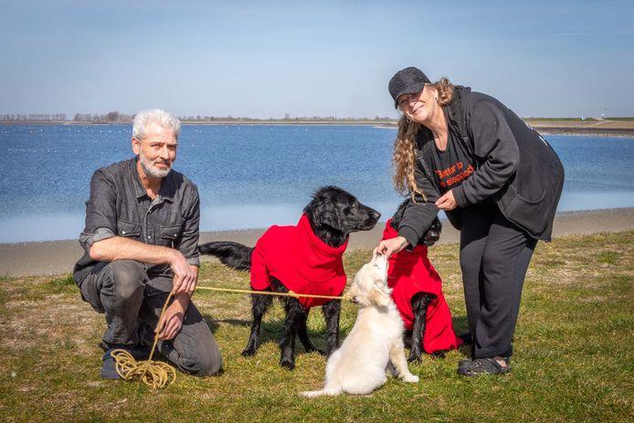 Stefan en Desiree de Koeijer lieten hun honden Sky en Star lekker zwemmen. Na afloop kregen ze een 'badjas' aan voor in de auto. Pup Joy is nog te klein om mee te zwemmen.