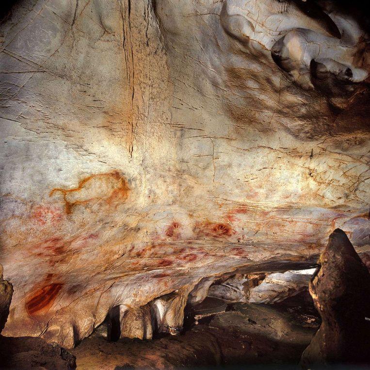 Archeoloog Juan Morales-Pérez ontdekte resten van slachtoffers van Europese kannibalen Beeld afp