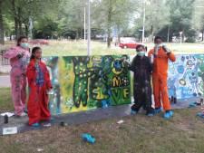 Graffiti geeft kleur aan Dirigentenlaan in Tilburg: 'Wit is saai'