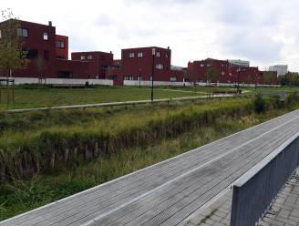 """Leuven plant derde buurtbos aan Centrale Werkplaatsen: """"De rest van het plein pakt de stad op langere termijn aan"""""""