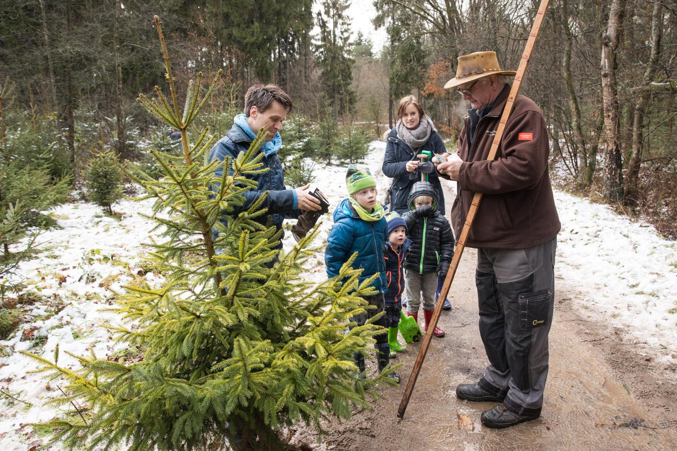 Kerstboom Kopen Baarn.Run Op Kerstbomen Uit Het Bos Amersfoort Ad Nl