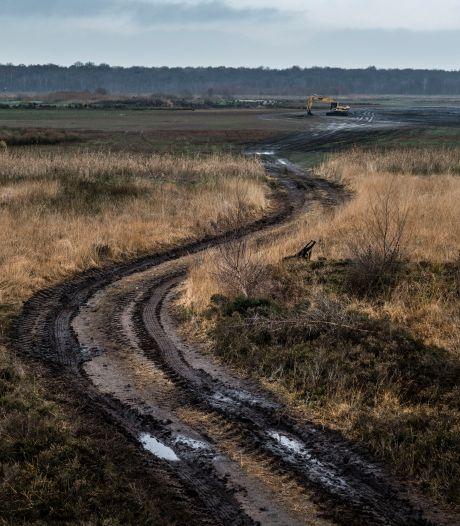 Kijk, een ree! Plas in Zwillbrock staat weer helemaal droog, waar blijft het water?