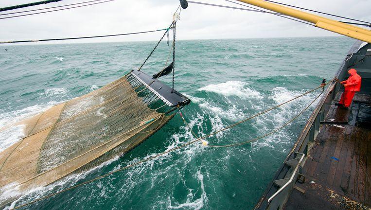 Het Texelse vissersschip TX1 op de Noordzee bij de Engelse kust. De EU voert voor de visserij in 2019 een 'aanlandplicht' in, met het doel overbevissing tegen te gaan. Beeld Ton Koene