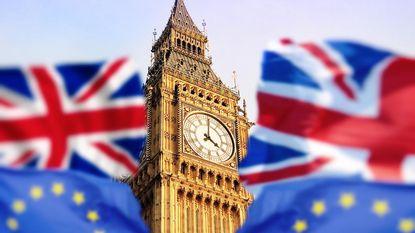 """OESO raadt VK aan om brexit terug te draaien via nieuw referendum: """"Alleen zo kan economie gered worden"""""""