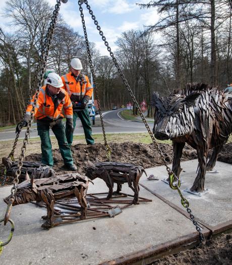 Met zwijnen heeft kunstenaar Patrick Visser zijn 'etalage Apeldoorn' gevuld