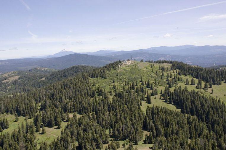 Soda Mountain, een berg in Oregon in het Cascade–Siskiyou National Monument.