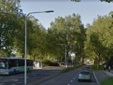 Automobilist opgepakt in Terneuzen: nog 58 dagen celstraf, geen rijbewijs en verzekering