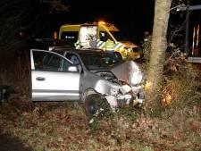 Auto botst tegen boom, twee gewonden