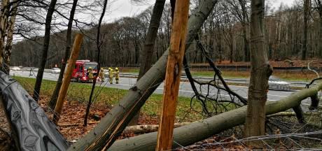 Rijstroken op A12 bij Bennekom weer open na omwaaien van bomen