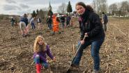 Fietssnelweg palmt groenzone in: 530 boompjes geplant ter compensatie