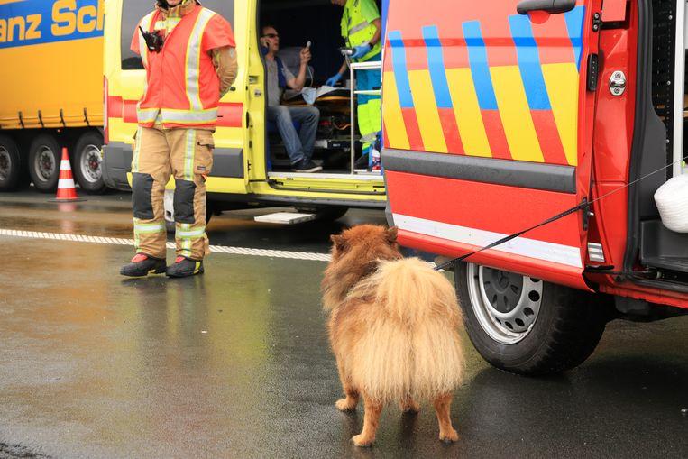 Terwijl de man de eerste zorgen kreeg toegediend in de ziekenwagen, ontfermde de brandweer zich over zijn hond.