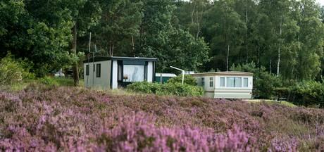 Slapen tussen de herten op Veluwe is  alleen voor 'vliegers'