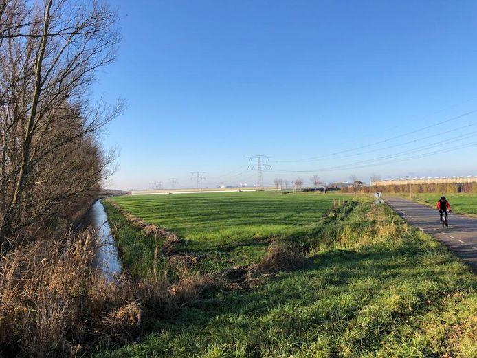 Het driehoekige perceel tussen de Oude Rijksweg en de Bathpolderweg bij Rilland waar Engie een mestvergister wil bouwen.