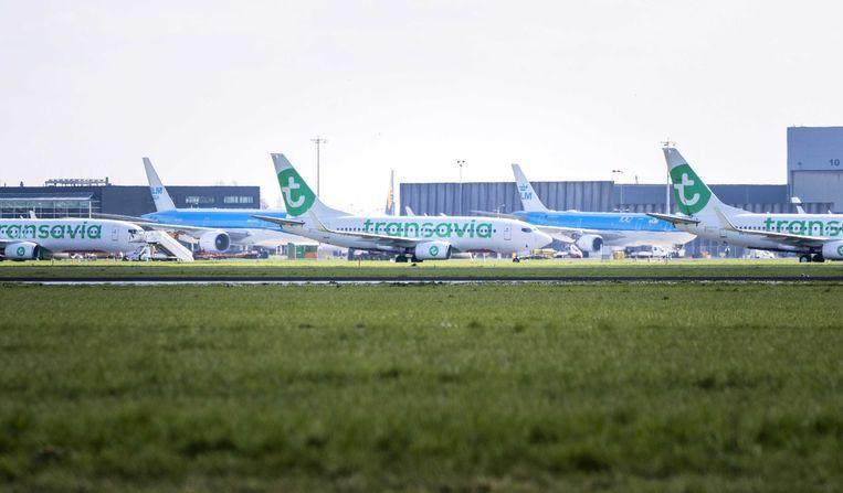 Vliegtuigen van Transavia en KLM staan aan de grond op Schiphol.  Beeld ANP
