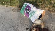 Schapenslachter dumpt afval langs kant van de weg