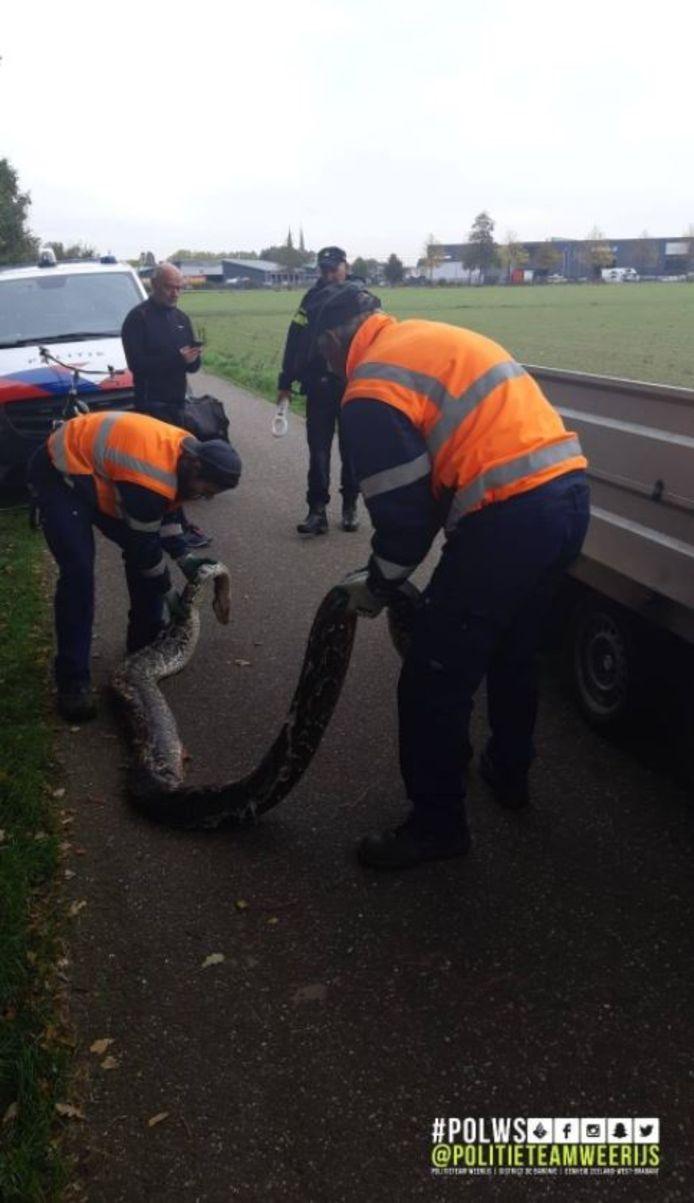 De slang is door de gemeente opgehaald.