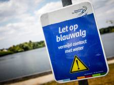 Blauwalgen in Chaamse zwemplas  't Smokkelstrand: negatief zwemadvies