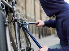 Forse daling van aantal fietsendiefstallen in Delft