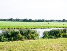 Natuurlijk boeren en vloeiende oevers: Baalder Uiterwaard laatste fase van Vechtpark Hardenberg