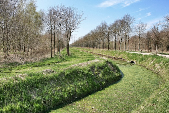 Deel van het Noorderbos, op vroegere vloeivelden aangelegd.