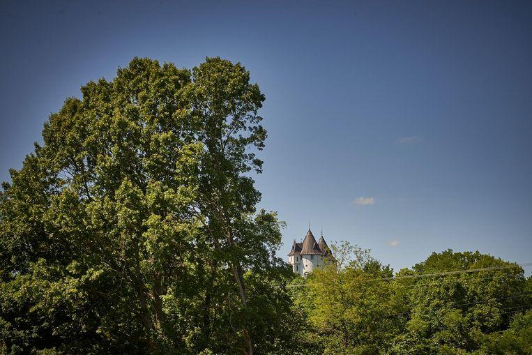 Castle Gwynn gezien vanaf de weg naar Triune. Beeld Theo Stielstra