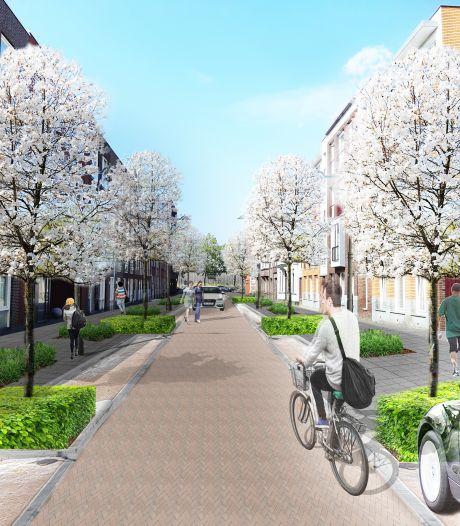 Voor het eerst in 145 jaar bomen voor de versteende Menno van Coehoornstraat