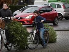 Kassa voor jeugd in Neder-Betuwe: 405 kerstbomen is 405 euro