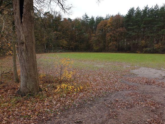 Op dit terrein zou de zomerbar kunnen komen.