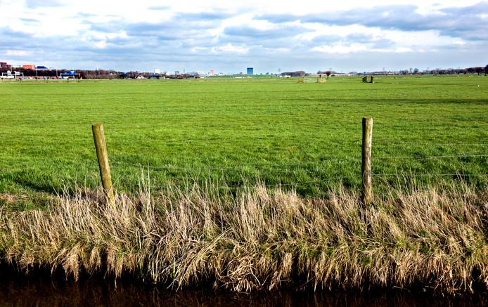 Polder Rijnenburg ten zuidwesten van Utrecht, waar wellicht windmolens komen voor schone energie.