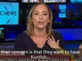 Une journaliste américaine interrompue par son fils alors qu'elle explique la situation dans le nord de la Syrie