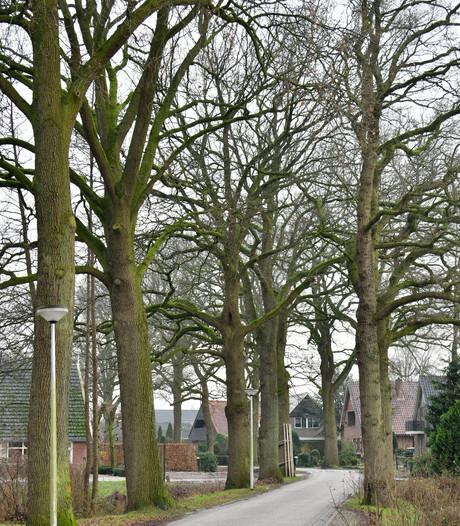 Buurtcomité tegen bomenkap in Goor