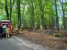 Brandweer blust brandende boomstammen op terrein van Pluryn