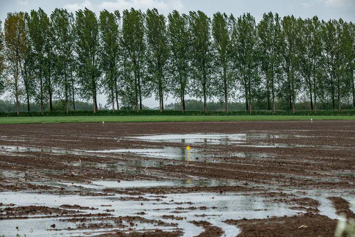 De kans op wateroverlast na hevige buien is in het noordelijk buitengebied behoorlijk groot. Op de foto een natte akker na hevige buien in 2018.