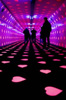 Doorslaand succes: Tunnel of Love trekt meer dan 80.000 geliefden