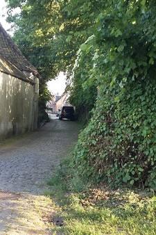 Onzekere toekomst voor dit idyllische straatje