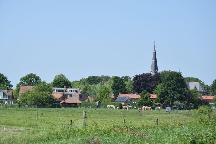 De wei van de koeien van Harrie van den Boer grenst aan woonpercelen.