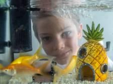 Jamie (8) koopt vissen voor eenzame Zwollenaren: 'Daar worden ze blij van'
