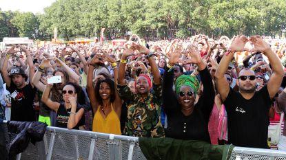 Geen Graspop, Sunrise Festival, Reggae Geel of Antilliaanse Feesten: het wordt een stille zomer