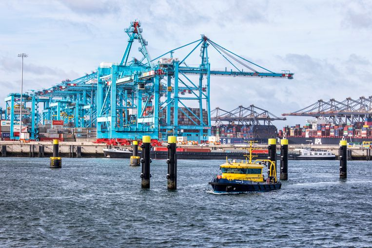 Rotterdamse haventerminals.  Beeld Raymond Rutting / de Volkskrant