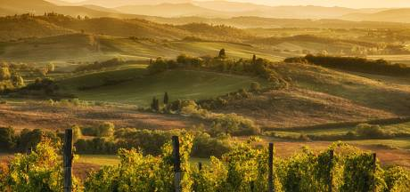Hoeveel weet jij van Italiaanse wijn? Test je kennis met deze quiz