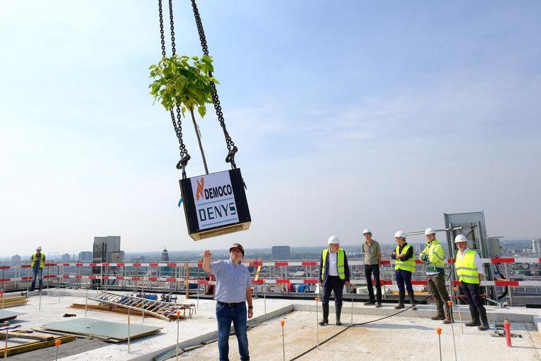 Een kraan hees het boompje op het dak, 57,7 meter hoog.