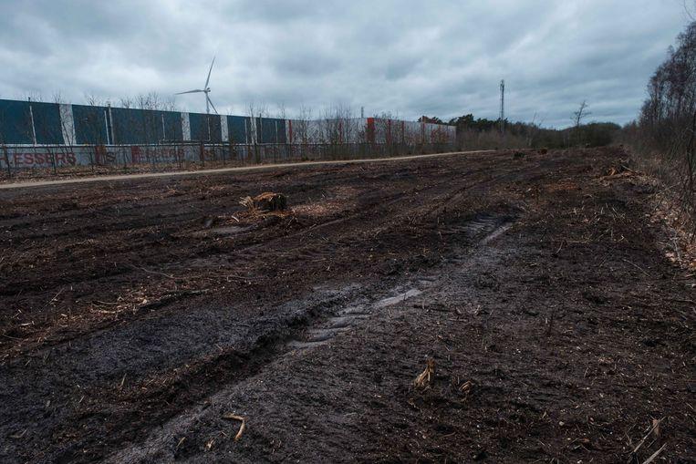 H. Essers, een grote speler in logistiek en transport in Genk,  zal een bos naast zijn terrein terug opwaarderen.