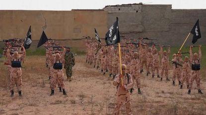 Al-Qaida lanceert grootse rekruteringscampagne om strijders bij IS weg te kapen na ineenstorting van kalifaat
