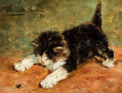 tentoonstelling-van-kattenschilderijen-is-best-bezochte-ooit-voor-museum-in-vianen