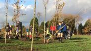2.000 bomen geplant voor nieuw speelbos