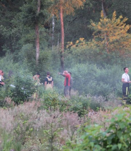 Brandweer heeft kleine bosbrand in Wierden snel onder controle