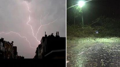 Hevig onweer aan de Westkust: tientallen oproepen voor omgewaaide bomen, rampenplan in Koksijde