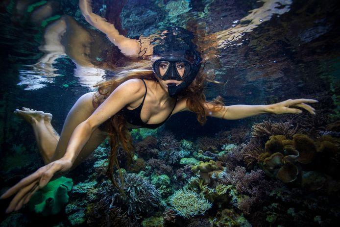 Sunniva Verheij  uit Heusden ziet het festivalseizoen in rook opgaan en daarmee ook haar inkomsten verdampen. Op vakantie op Curaçao besluit ze de stichting Fix the Reef op te richten om het koraal te redden.
