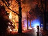 Metershoge vlammen bij brand in heg Kaatsheuvel