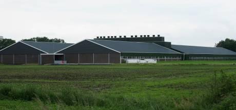 Fracties Hilvarenbeek vragen provincie om ademruimte voor boeren